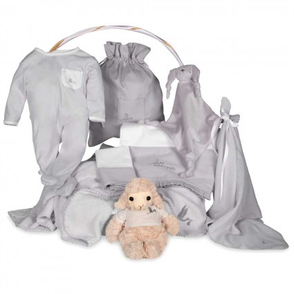 Newborn Baby Hamper & Baby Gift Baskets | BebedeParis  Dreams Classic Baby Basket