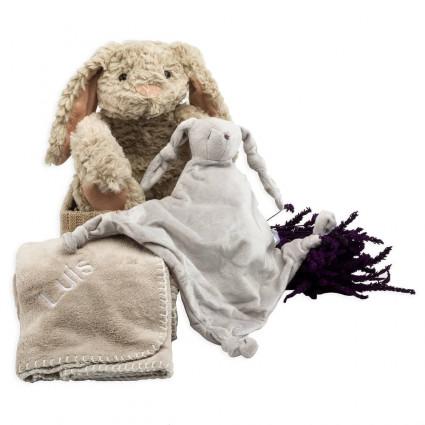 Newborn Baby Hamper & Baby Gift Baskets | BebedeParis  Bunny comfort baby basket