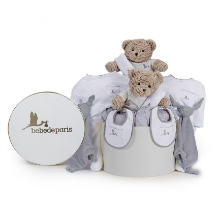 Premium gift Twins Classic Baby Hamper