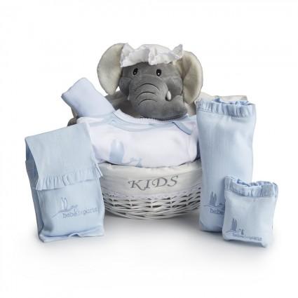 Essential Post-Hospital Baby Gift Hamper blue